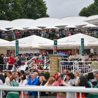 Case Study: York Racecourse 12